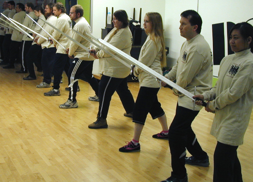 Aoa Sword Fighting Hema Historical European Martial